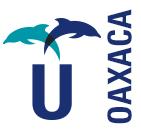 UGMEX OAXACA