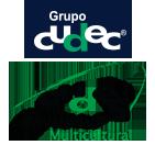 UDEC CYP